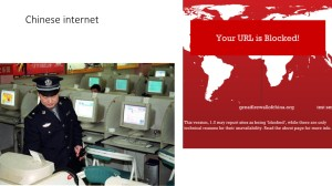 Internet & National Interest (6)